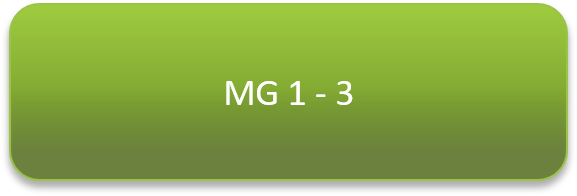 mg1-3.png