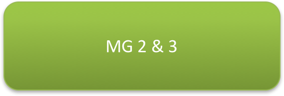 MG2&3.png