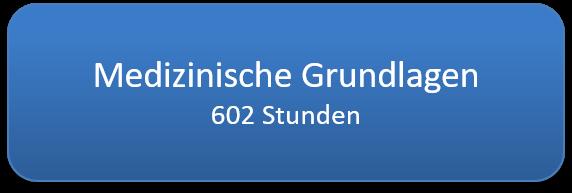 medizinische_grundlagen_600std.png